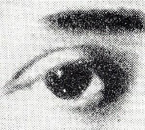 Dieses Auge der Rosa Luxemburg ist das Symbol des Archivs Frauenleben. Rosa Luxemburg hat Geschichte nachhaltig beeinflusst. Von den Gründerinnen des Archivs Frauenleben wurde sie symbolisch und stellvertretend für diejenigen ausgewählt, die ihren Beitrag zum wirtschaftlichen Fortschritt und zur sozialen Gestaltung in unserer Region leisten und leisteten.